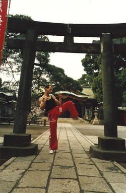 Entrenando en Japón