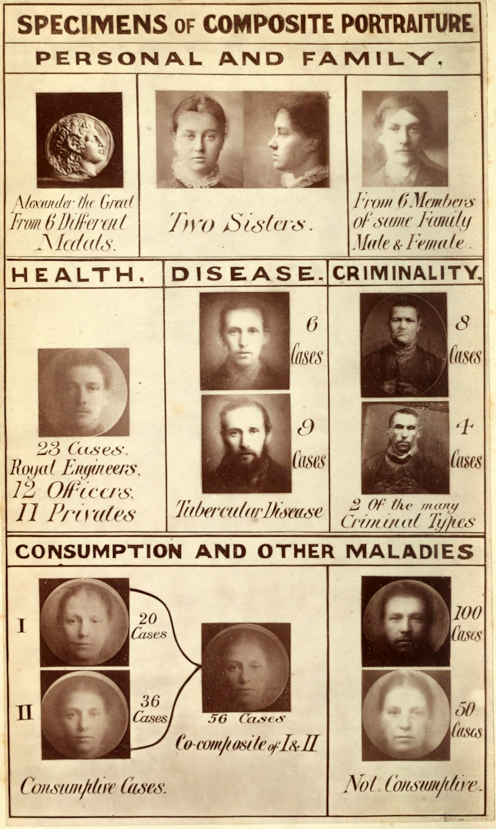 """A page shows a number of different faces. They are """"composite photographs,"""" averages of a number of different individuals photos, that purport to show the average faces for """"healthy,"""" """"diseased"""" and """"criminal"""" types among others."""