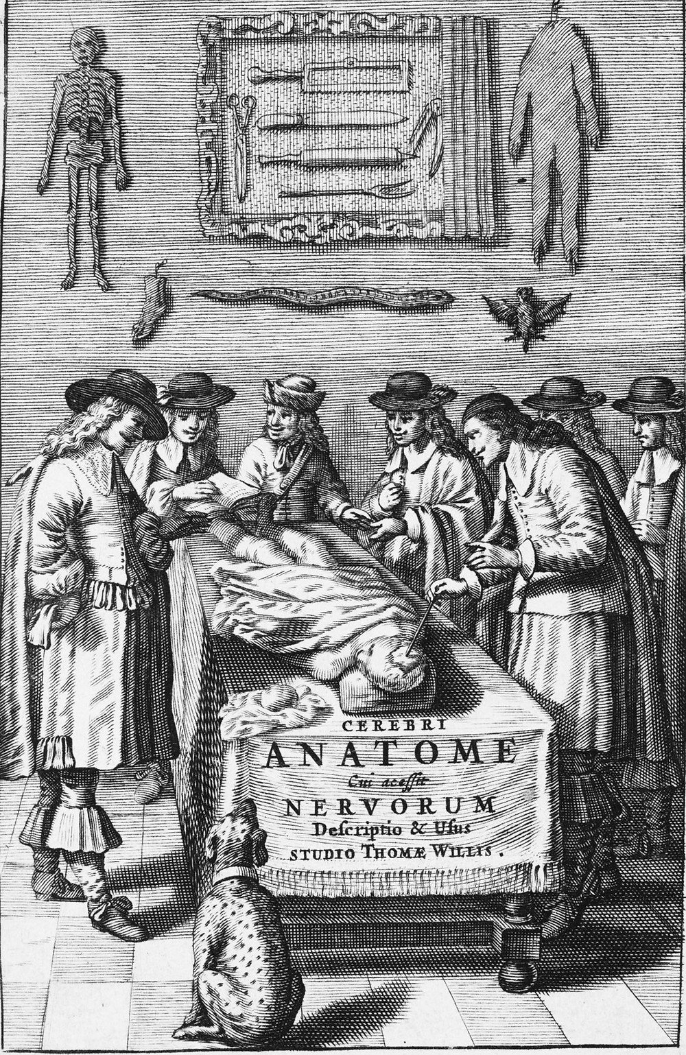 An image from a founding document of both neurology and pathological anatomy by Thomas Willis portraying a number of medical men surrounding a dead body on a table.