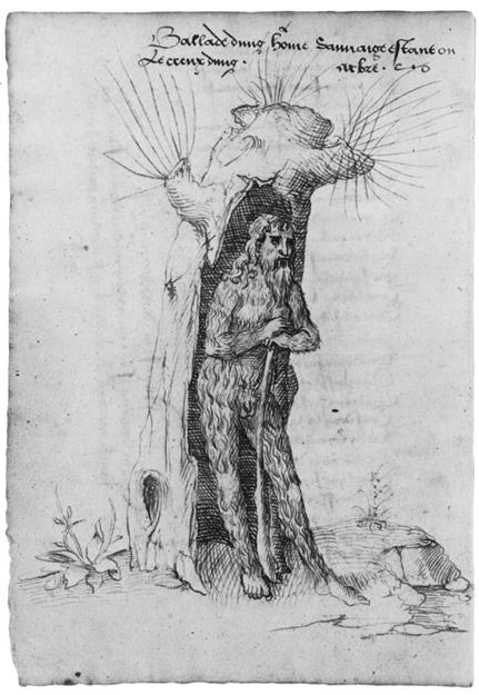 """A """"wild man"""" covered in fur with a long beard and a staff, takes shelter in a large hollowed-out tree. He looks blankly off to the side and is surrounded by a few ink-drawn stones and plants."""