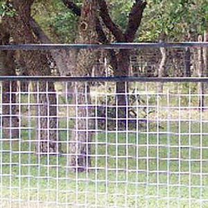 Ranch Style Fences