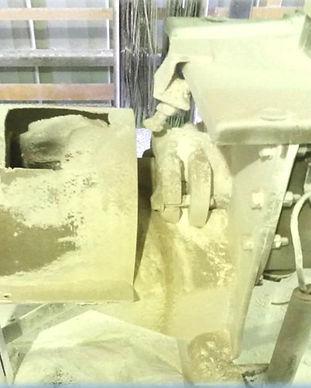 Gypsum - Tamar seal.jpg