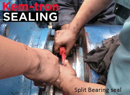 Split bearing or lip seal Kem-tron seali