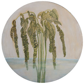 Gabriela Pez' Water Botanical 2.
