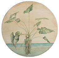 Water Botanical by Gabby Pez.