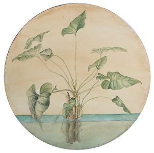Gabriela Pez' Water Botanical 1.