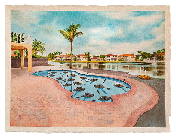 Harold García V's Landscape Patterns In a Disturbed Environment.
