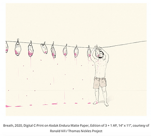 Screen Shot from Colombia University's Postdoc Society's blog about Ronald Vill's work.