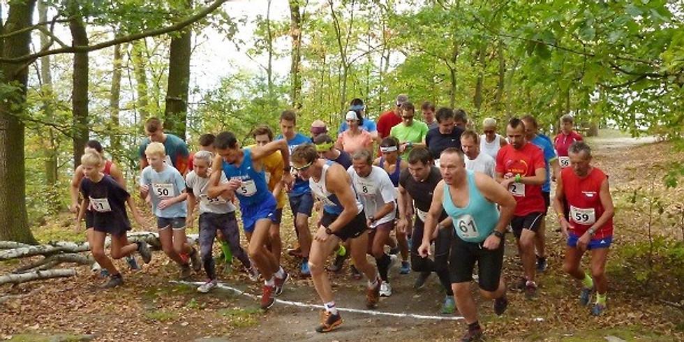 Běh na Lahti 2020