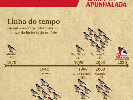 Linha do tempo dos acontecimentos importantes na história da Saíra-apunhalada!