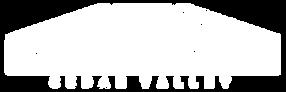 DeckworksCedar Valley Cedar Falls,IA logo