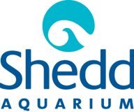 Shed Logo.png