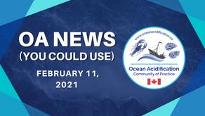 OA News (You Could Use) Feb. 11, 2021