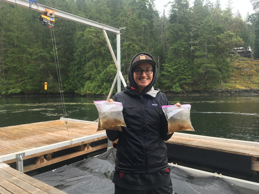 Person standing on an oyster raft holding two ziplock bags full of water and hydroids with caprellids