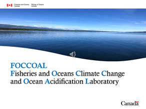 FOCCOAL: Fisheries and Oceans Climate Change and Ocean Acidification Laboratory