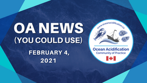 OA News (You Could Use) Feb. 4, 2021