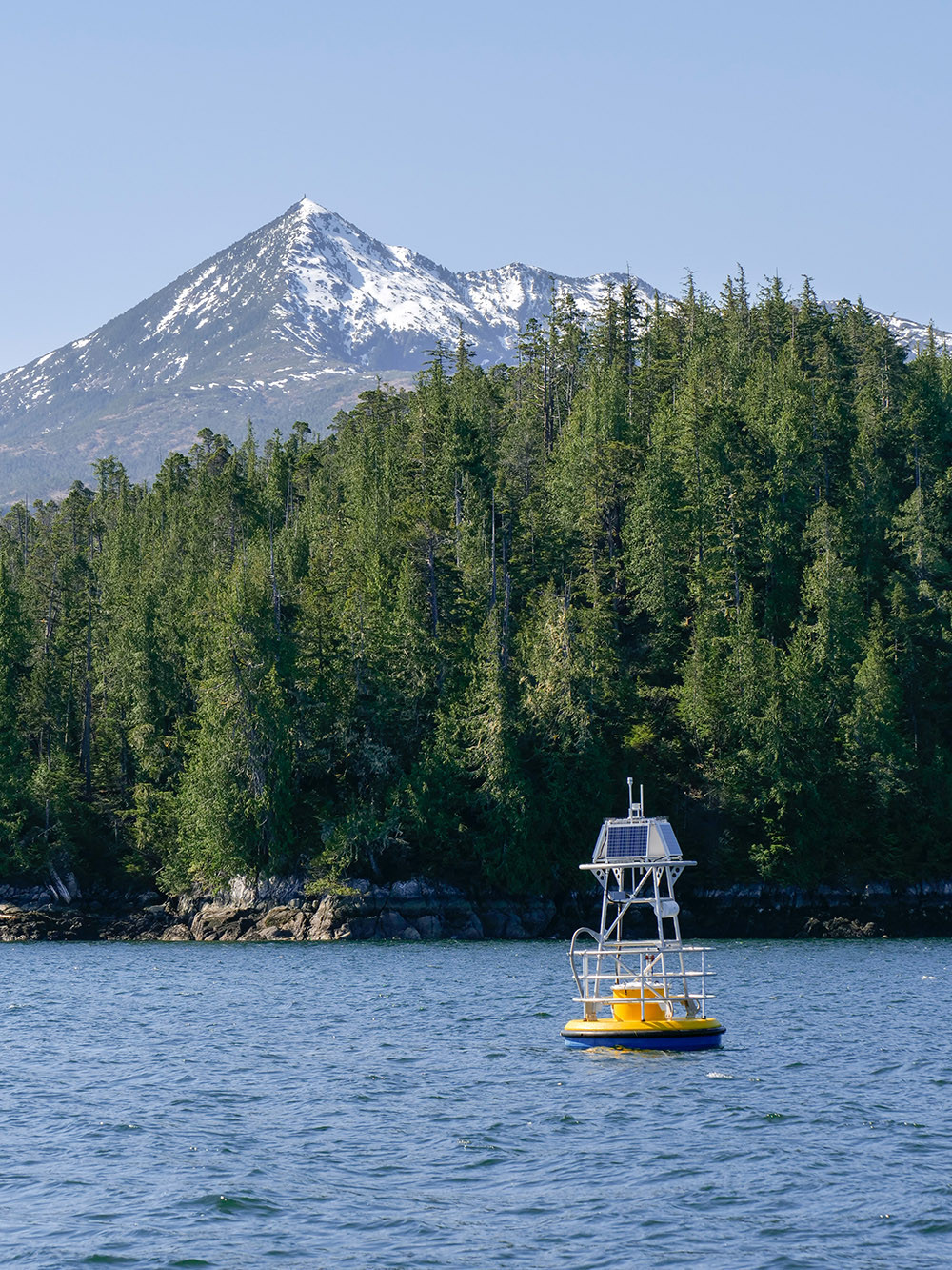 A large yellow buoy floats in the water in front of an island covered in spruce trees with a snowy mountain top in the background