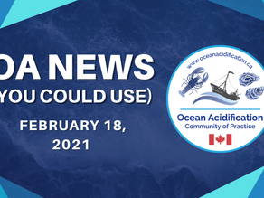 OA News (You Could Use) Feb. 18, 2021