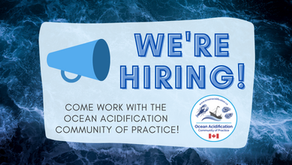Come work with the OA Community of Practice!