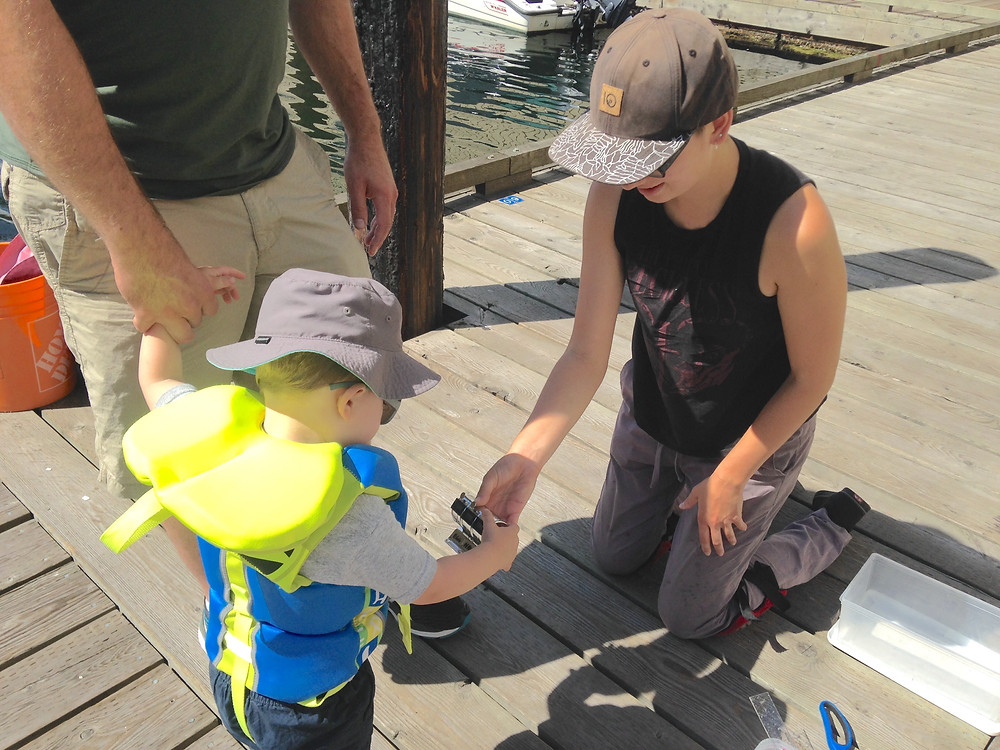 A person on a dock holding out a clicker counter to a curious toddler in a lifejacket who is touching the buttons. A parent (only legs and lower torso visible) holds the toddler's other hand.