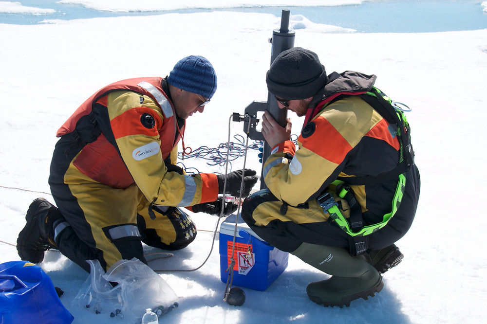 Sampling from an ice floe in Hudson Bay (Photo credit: Lucette Barber)
