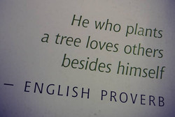 he who plants