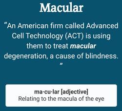 macular