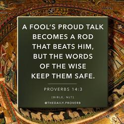 a fool's