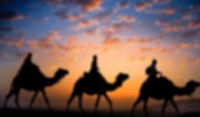 camel-trekkin-sunset.jpg
