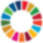 SDG Wheel_PRINT_Transparent.png
