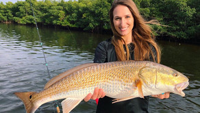 The Best Bass Fishing Spots in Florida