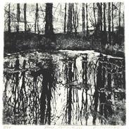 Pond Reflections 6 x 6 close.jpg