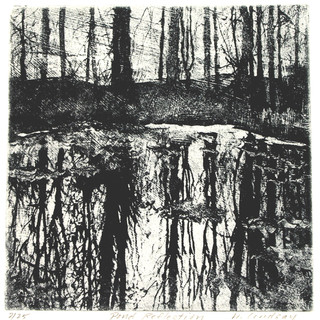 Pond Reflections 6 x 6 close.jpg
