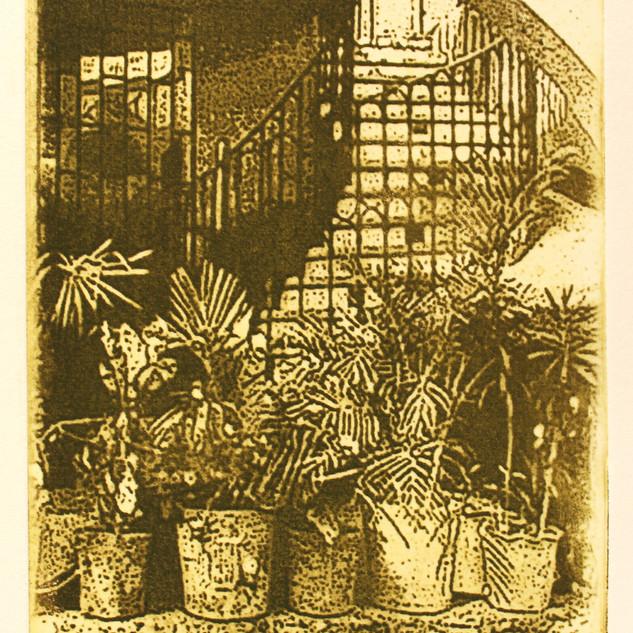 Mexican Staircase 5 x 4.JPG