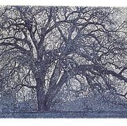 Corrales Cottonwood in Blue 4x8 sized.jp