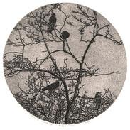 Blackbirds-8x8_edited.jpg