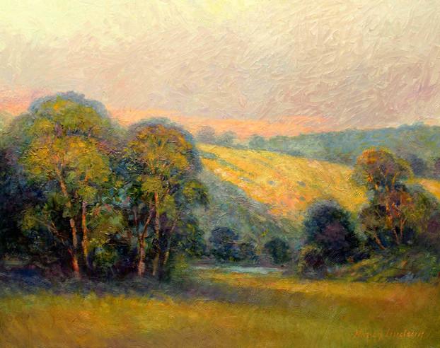 Meadow Light 22 x 28 oil