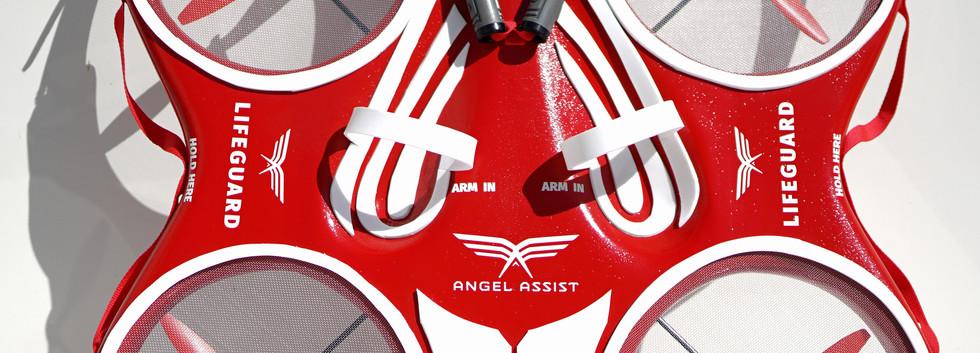 Angel Assist 1.jpg