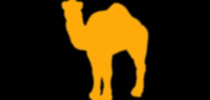Road Camel logo