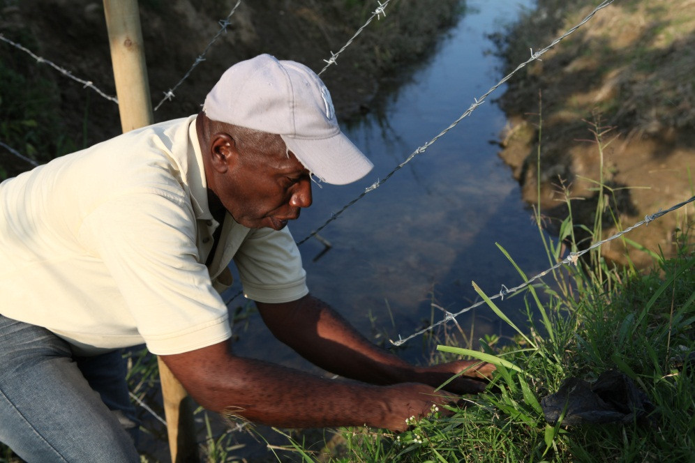 Don Hernan Zapata, one of the few remaining traditional farmers in Norte del Cauca, Colombia, planting trees along a fence of the Baha'i temple land