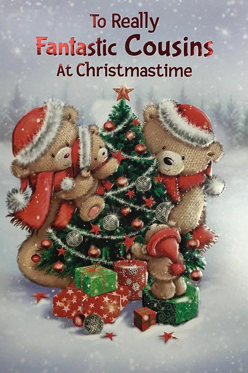 Cousins Christmas Card