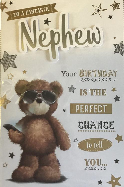 Nephew Birthday Card 8 Page