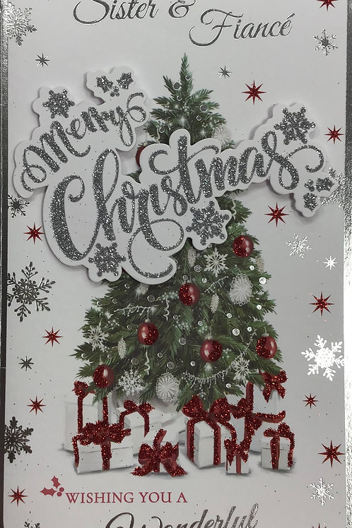 Sister & Fiance Christmas Card