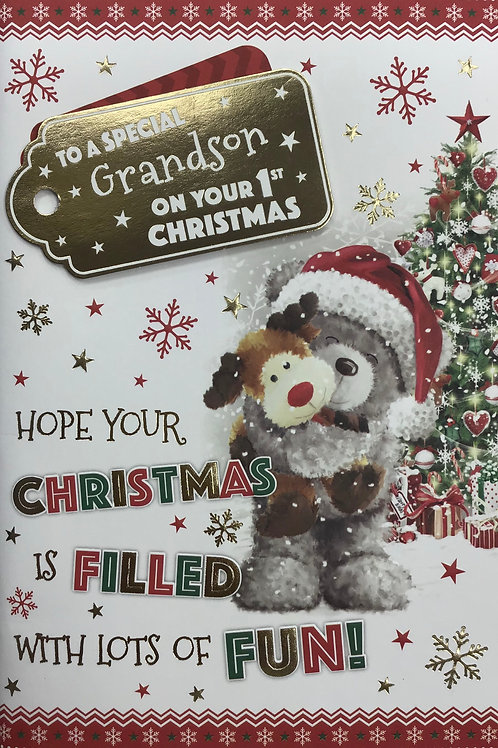 Grandson's 1st Christmas Card