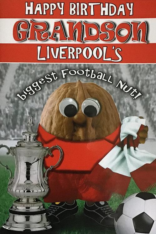 (Grandson) Liverpool's Biggest Football Nut