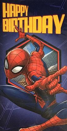 Spider-Man Open Birthday Card