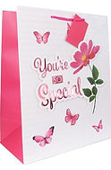 Youre so special gift bag 47168.jpg