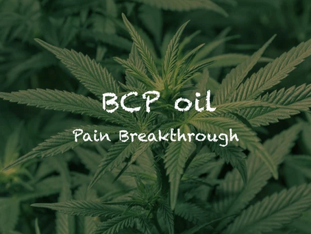 BCP oil is the 'next big thing' in natural pain remedies (Australia)