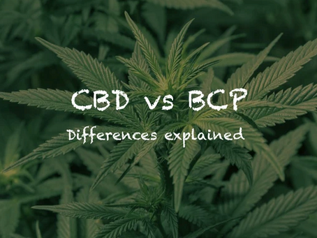 CBD vs BCP, What's the difference?