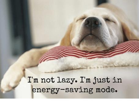 5 Easy Energy Saving Tips